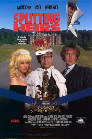 Перепутанные наследники (1993)