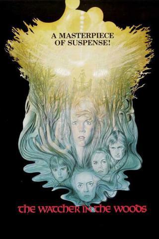 Наблюдатель в лесу (1980)